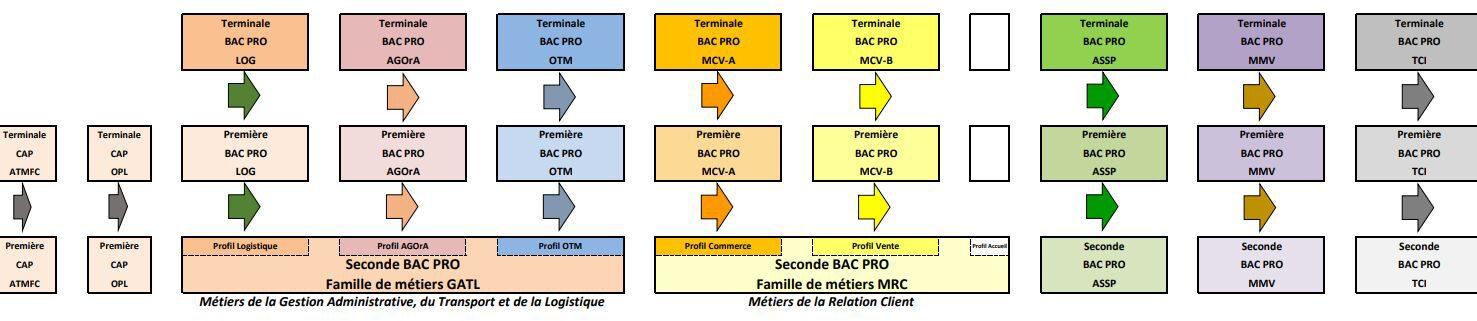 formations b.jpg